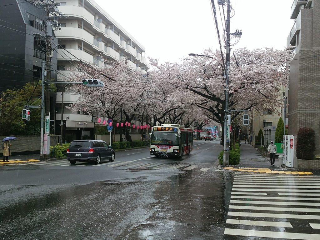 中野通り バス