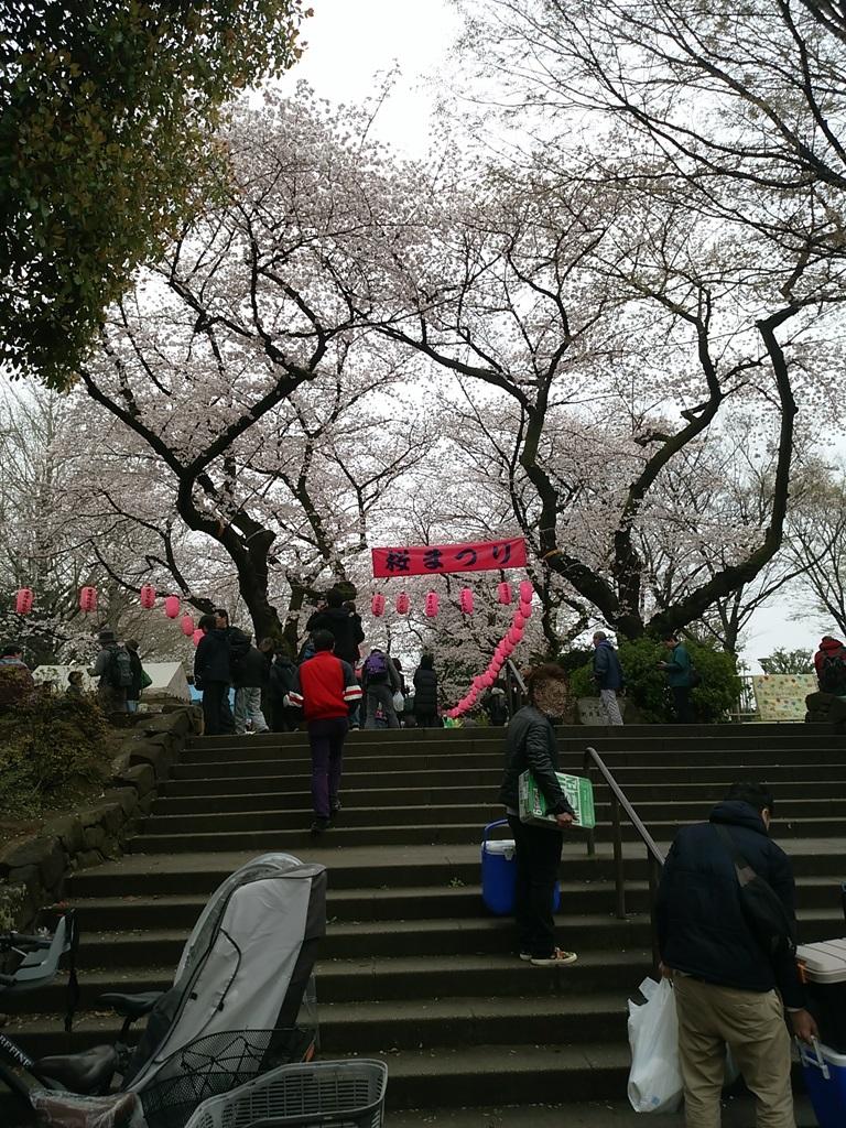 中野通り桜祭り