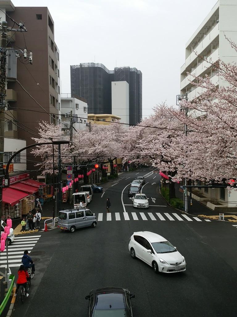 中野通り歩道橋
