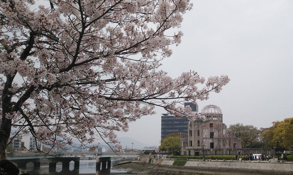 桜と原爆ドーム
