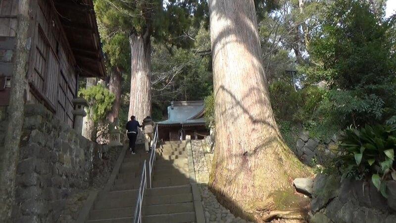 日枝神社石段